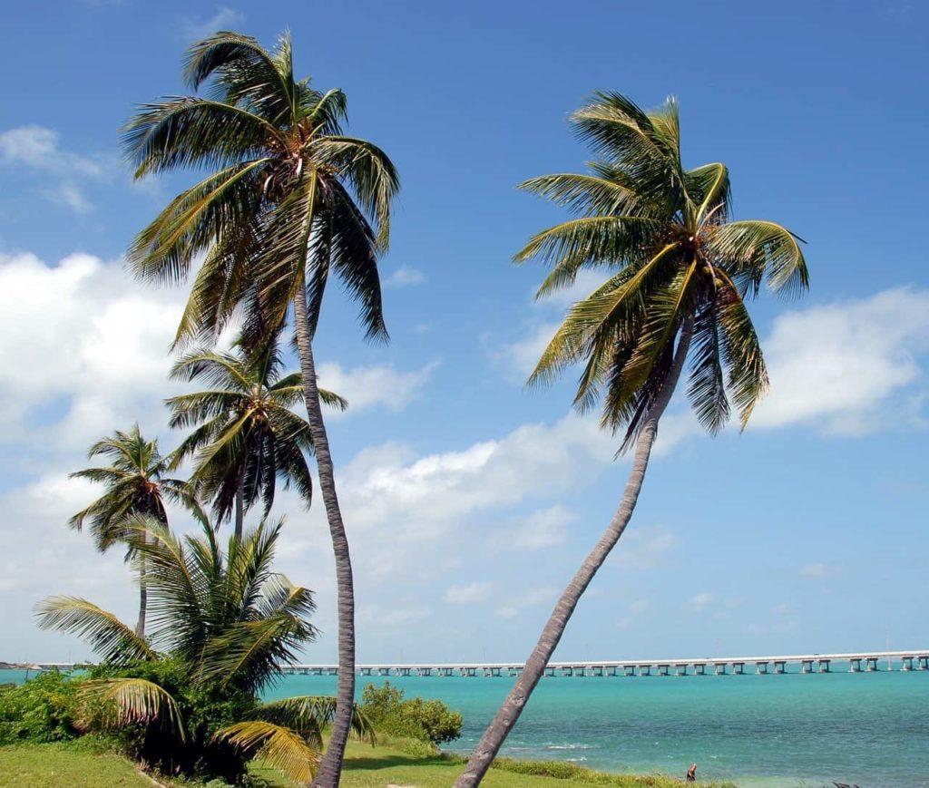 Bahia Honda State Park, Miami to Key West drive, Florida