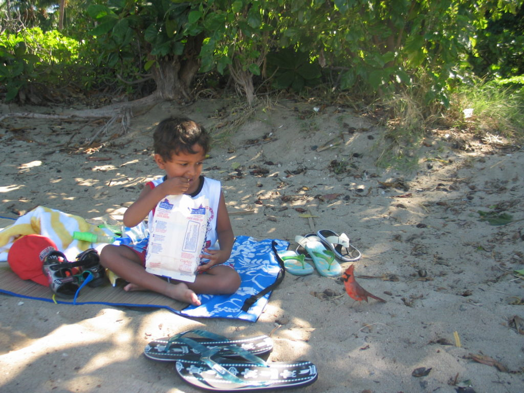 Picnic on the beach - Best things to do in The Big Island of Hawaii - Photo by Outside Suburbia