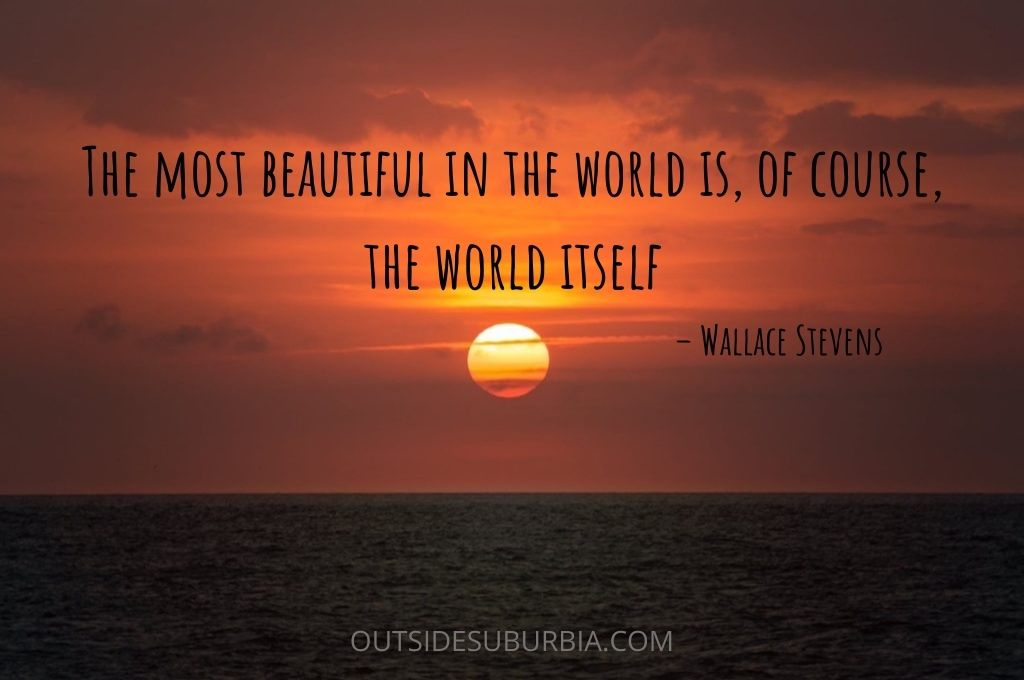 """Best Travel Quotes & Captions 