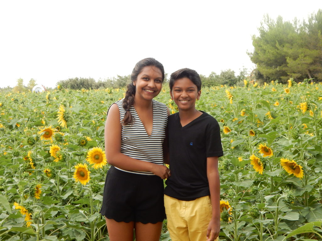 We found sunflowers