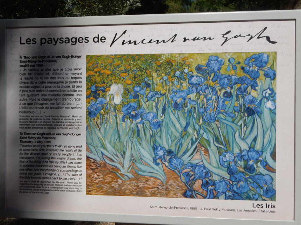 Van GoghAsylum