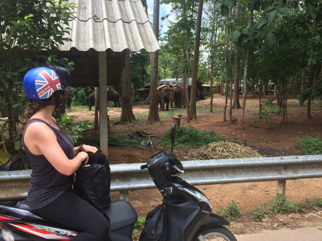 Outside Suburbia - Chiang Mai