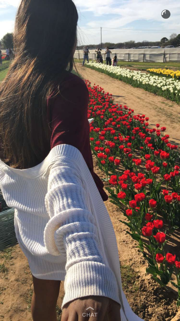 Road trip from Dallas to Gainsville to Texas Tulips - Outside Suburbia