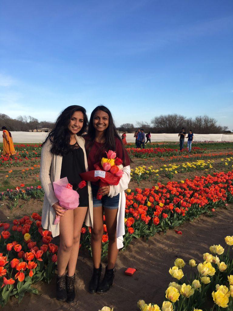 Texas Tulips - Outside Suburbia
