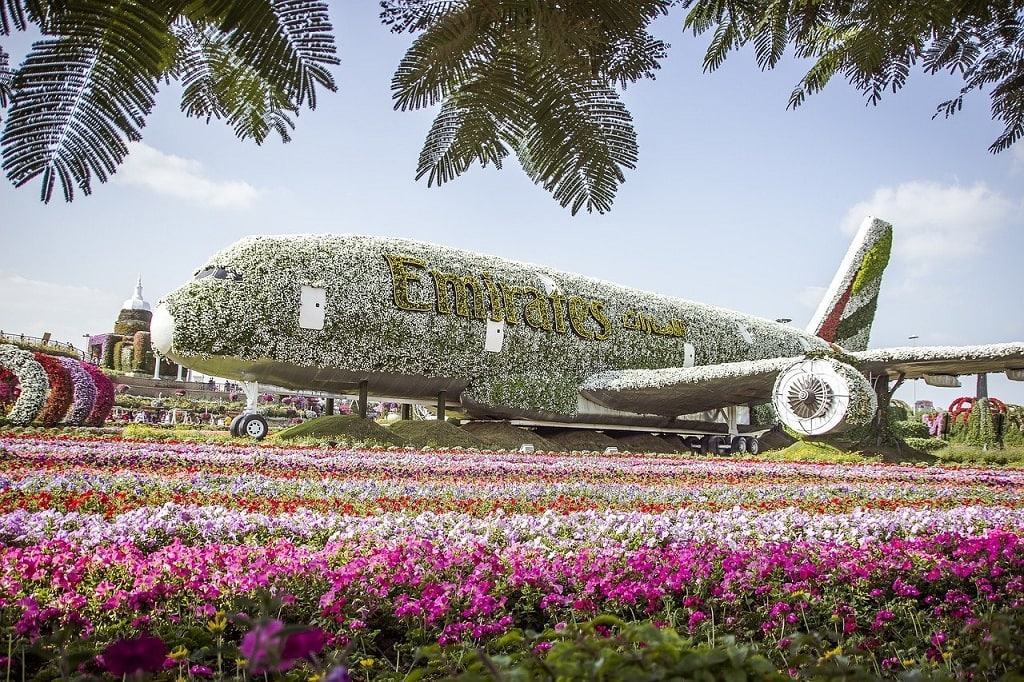 Miracle Garden: Best things to do in Dubai   Outside Suburbia