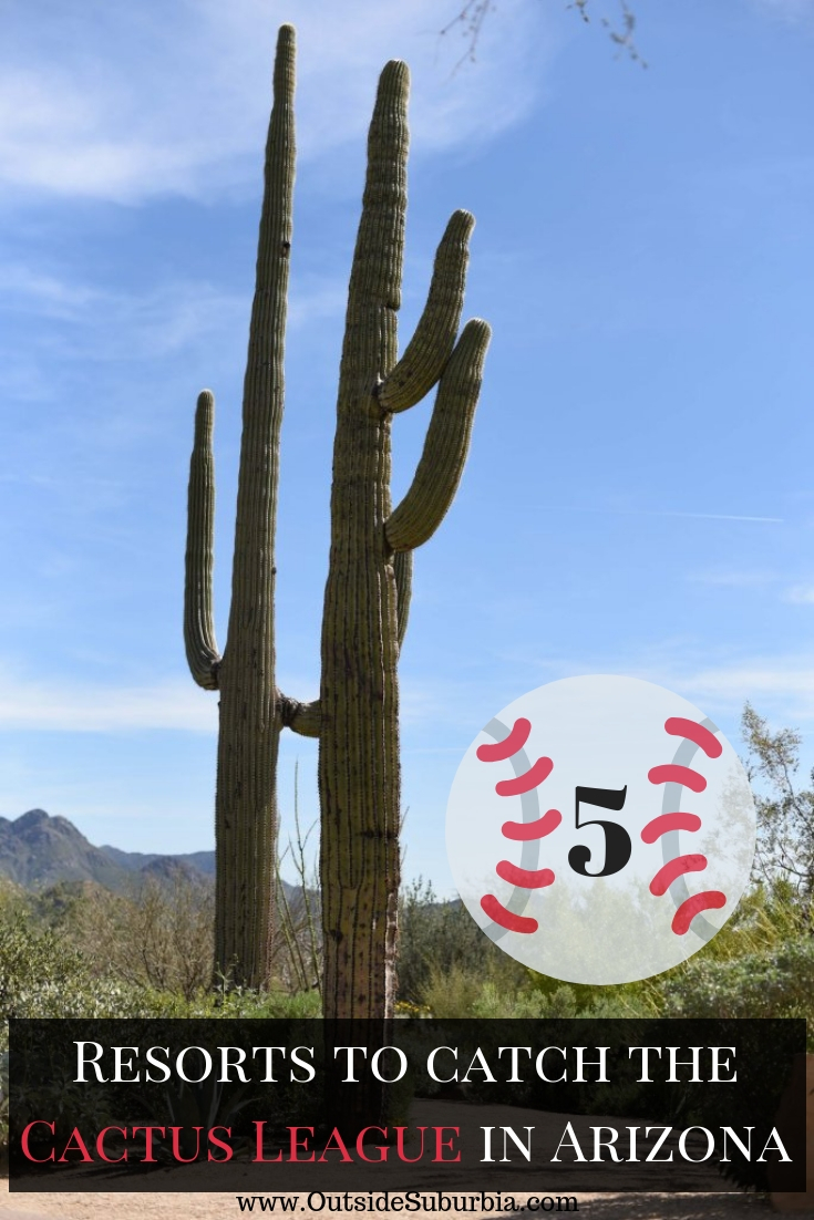 The Cactus League aka Baseball Spring training has long been a cherished Arizona tradition for locals, tourists and of course, baseball fans... See tips and best hotels to experience Spring Training. #CactusLeague #SpringTraining #Baseball #ArizonaResorts