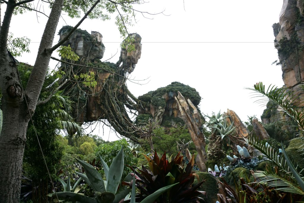 Everything you need to know about Pandora at Disney's Animal Kingdom - Photo by Outside Suburbia