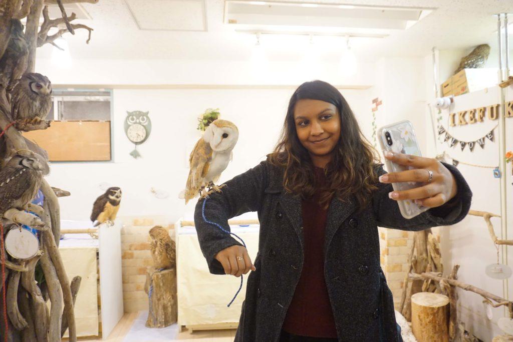 Owl cafe, Ikebukero, Japan