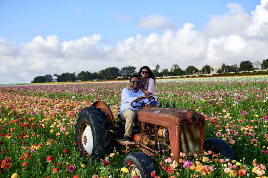The Flower Fields, Carslbad, San Diego - Photo by Outside Suburbia