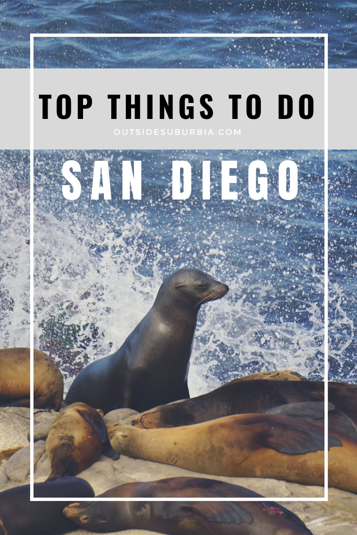 Top things to do in San Diego. Visit zoo and museums in Balboa park, stop by Embarcadero, drive to La Jolla for a day and see the Flowerfields in Carlsbad : San Diego weekend itinerary #OutsideSuburbia #SanDiegoWeekend #3daysinSanDiego