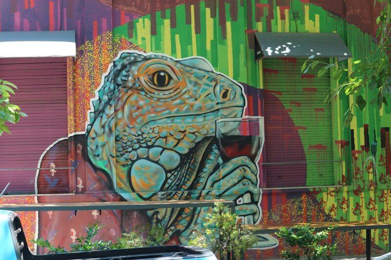 Street art in Mendonaza