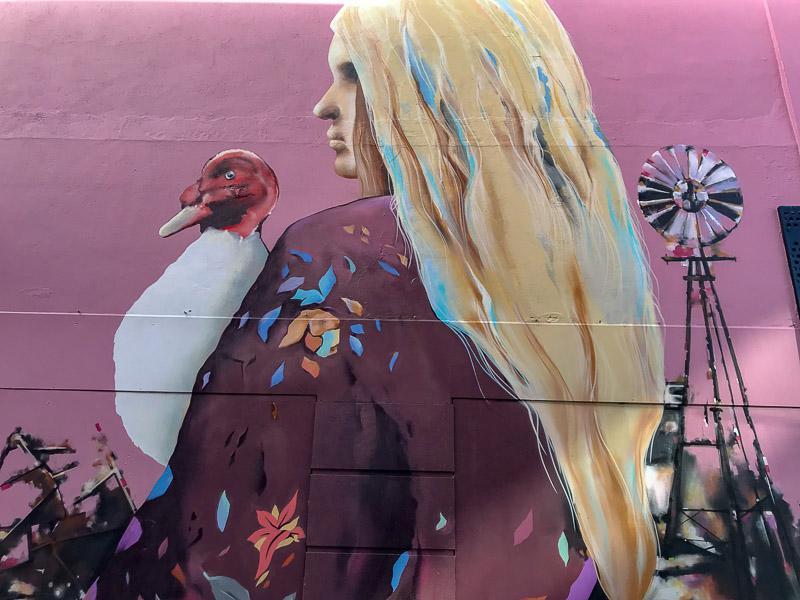 Adelaide-South Australia-Streetart