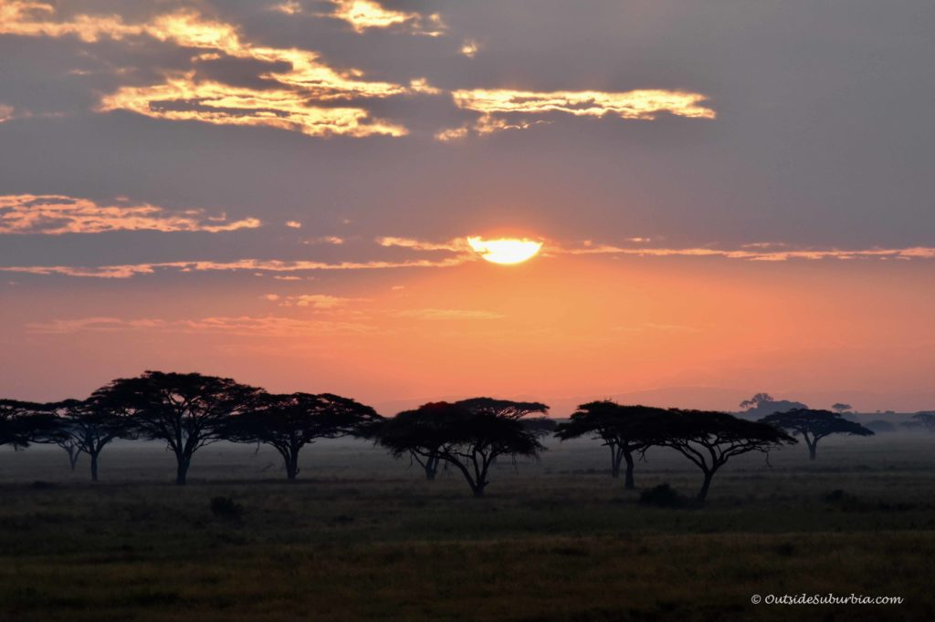 Hot air balloon safari in Serengeti #Serengeti #Tanzania Photo by Priya Vin for OutsideSuburbia