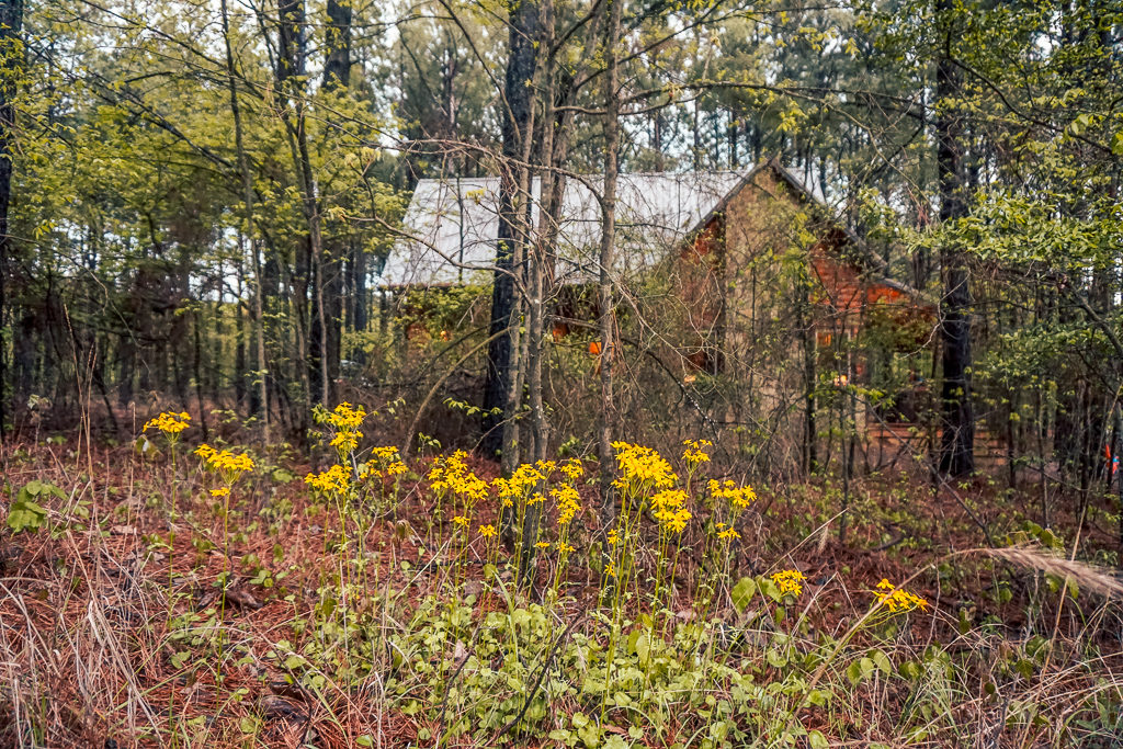 Where to stay in Beavers Bend State Park - Photo by Outside Suburbia
