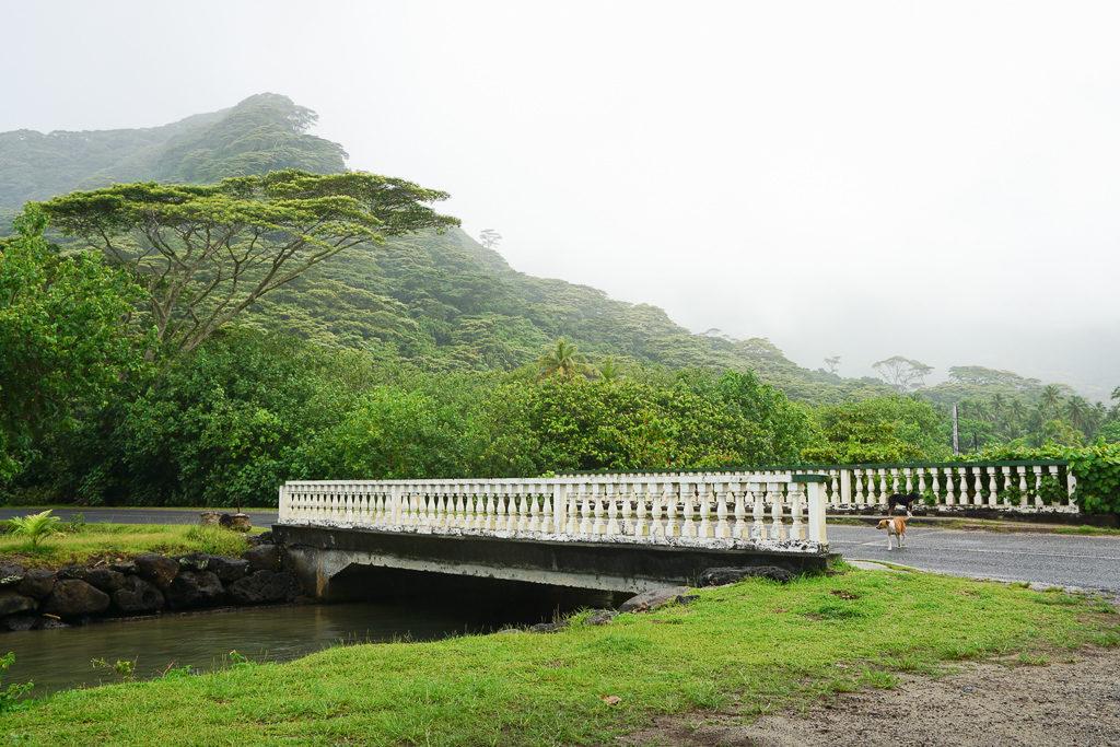 Photo Blog - Moorea Island Drive - Photo by Outside Suburbia