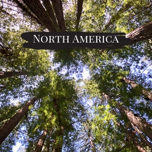North America Travel Blogs, Tips and Itineraries by Outside Suburbia