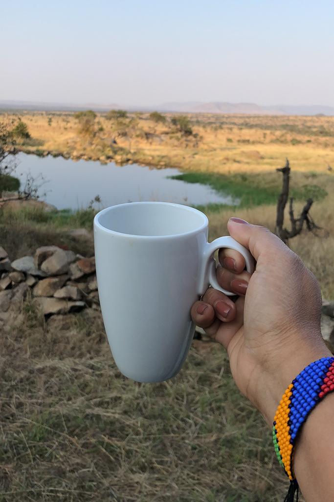 Morning view, Four Seasons Safari Lodge Serengeti - Photo by Outside Suburbia