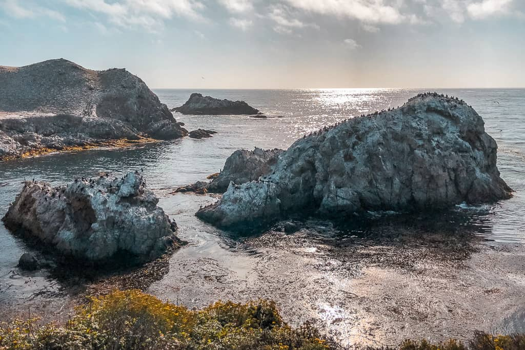 Bird Island and China Cove, Point Lobos State National Reserve - Photo by Outside Suburbia