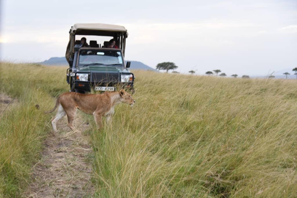 Kenya Safari - Luxury Family Safari Experience at Angama Mara, Kenya Photo by Outside Suburbia