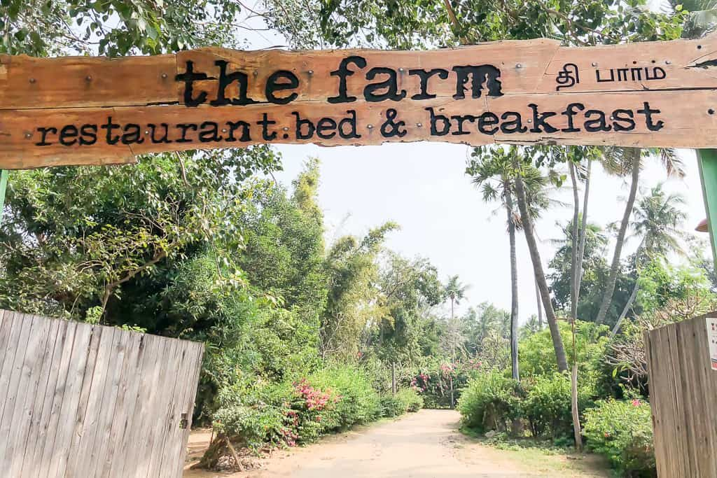 The Farm Chennai Restaurant