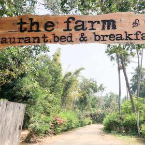 The Farm Chennai Restaurant