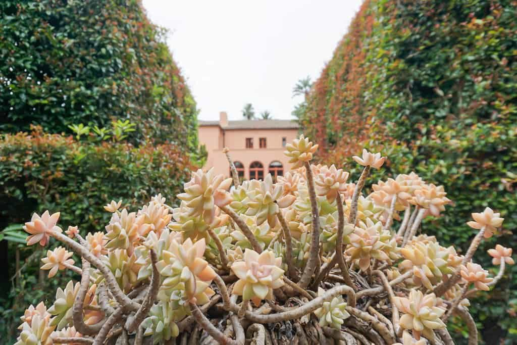 An inside look at Lotusland, One of the Best Gardens in the World - Photo by OutsideSuburbia.com
