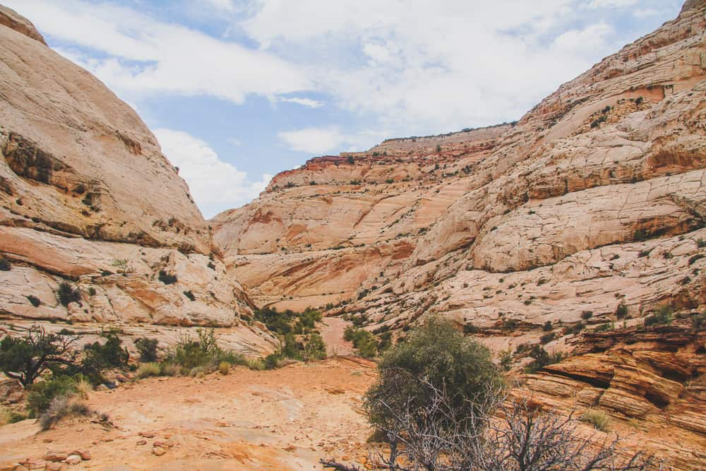 Short & Easy Hikes in Capitol Reef, Utah  -  Best US National Parks for families - OutsideSuburbia.com