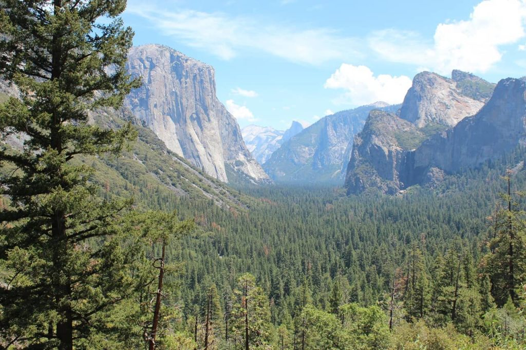 Short & Easy Hikes in Yosemite National Park, California - Best US National Parks for families - OutsideSuburbia.com