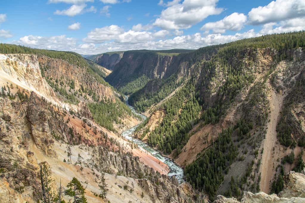 Grand Canyon of Yellowstone! Best things to  see in Yellowstone - OutsideSuburbia.com