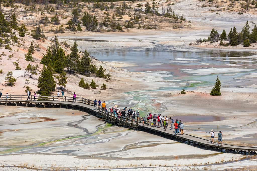 Best things to do and see at Yellowstone National Park - OutsideSuburbia.com