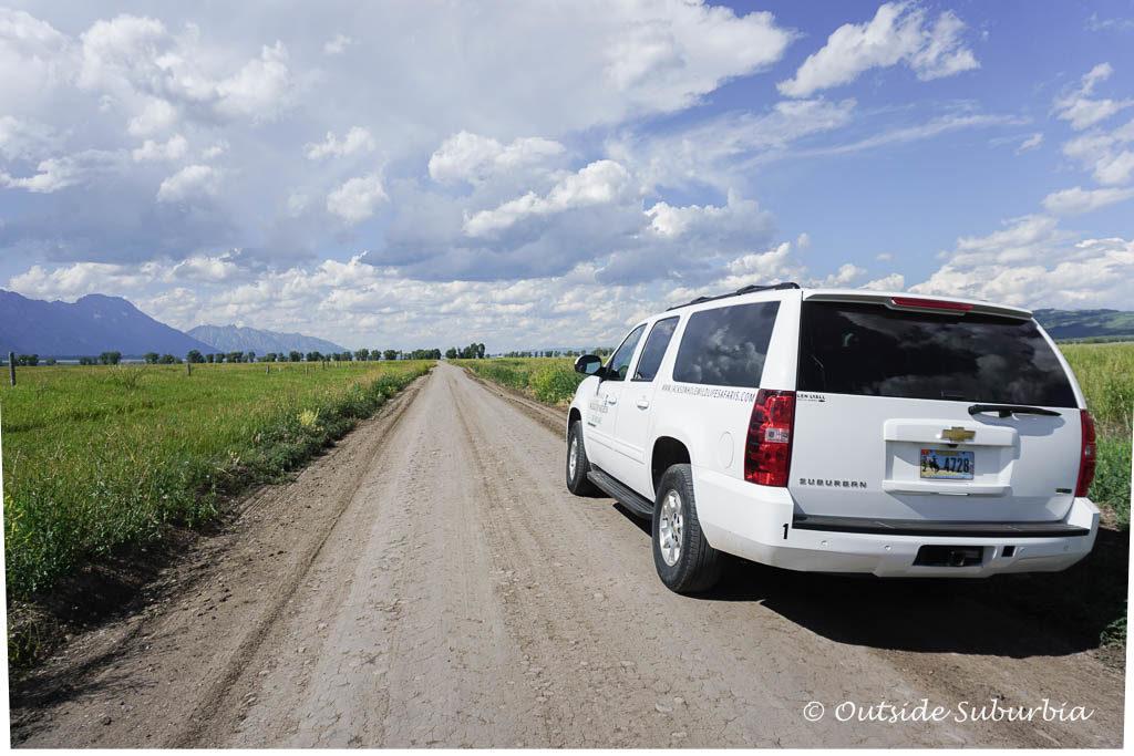 A Safari in Wyoming at the Grand Teton and Yellowstone National Parks with Jackson Hole Wildlife Safari