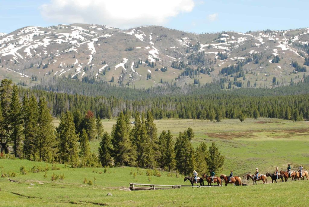 Best things to do in Yellowstone - See the backcounty! OutsideSuburbia.com