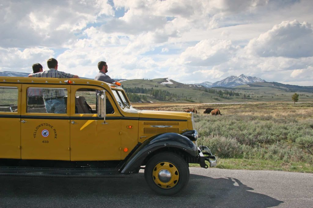 Best Yellowstone Experiences | Outside Suburbia