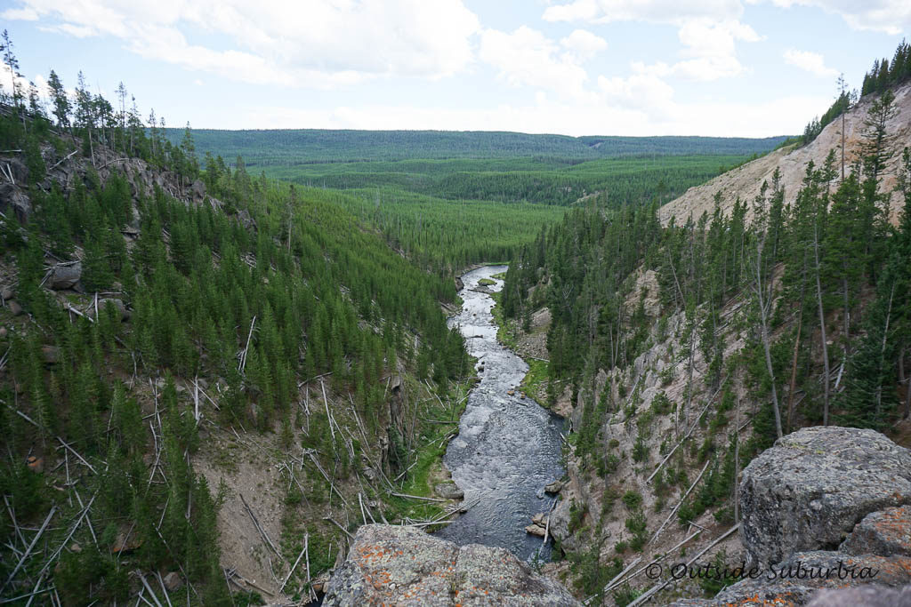 Gibbon River. 15 Best things to do and see in Yellowstone - OutsideSuburbia.com