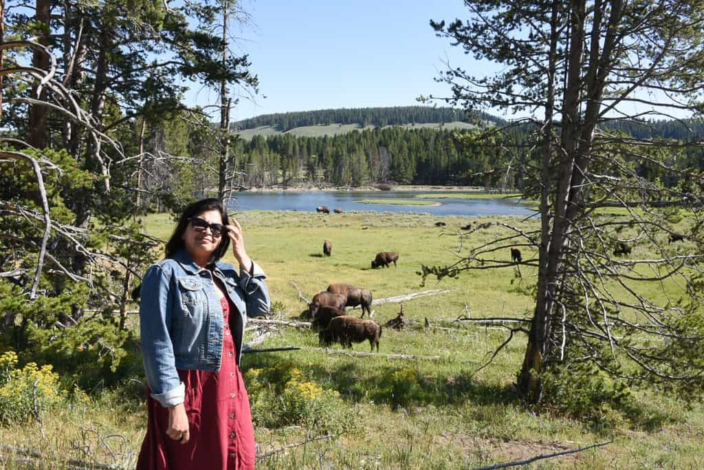A Safari in Wyoming at Hayden Valley, Yellowstone - Photo by OutsideSuburbia.com