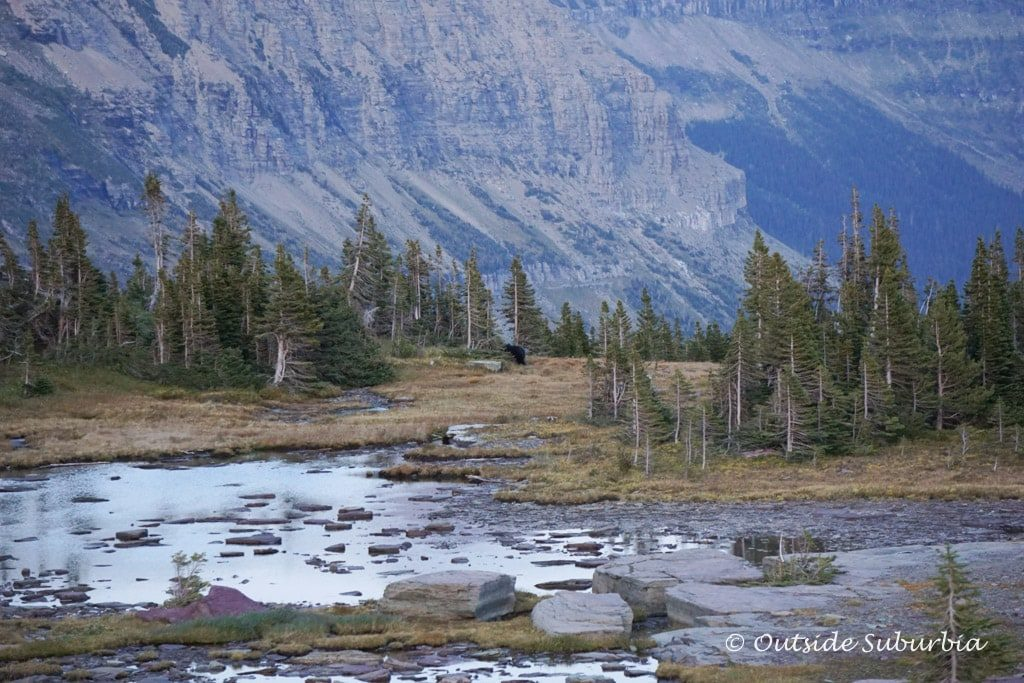 Best things to do in Glacier National Park | Outside Suburbia