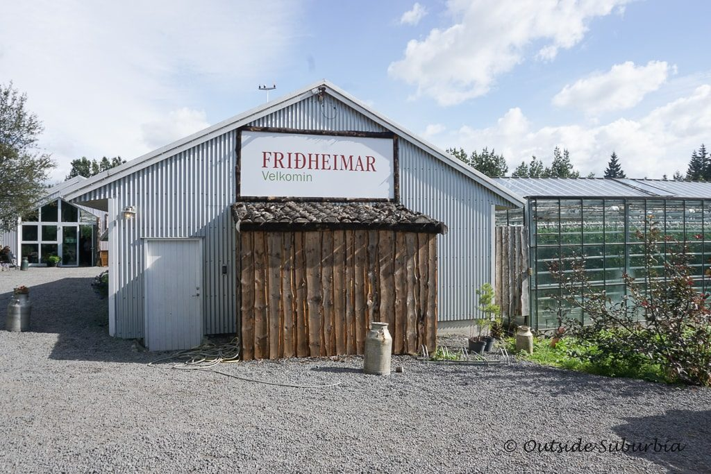 Fridheimar Tomato Greenhouse in Iceland - OutsideSuburbia.com