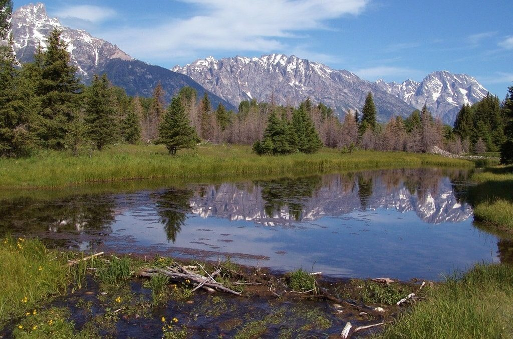 Schwabacher's Landing - Best photo spots in Jackson Hole, Wyoming - OutsideSuburbia.com