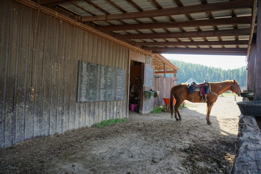 Horseback riding near Whitefish in Montana  - OutsideSuburbia.com