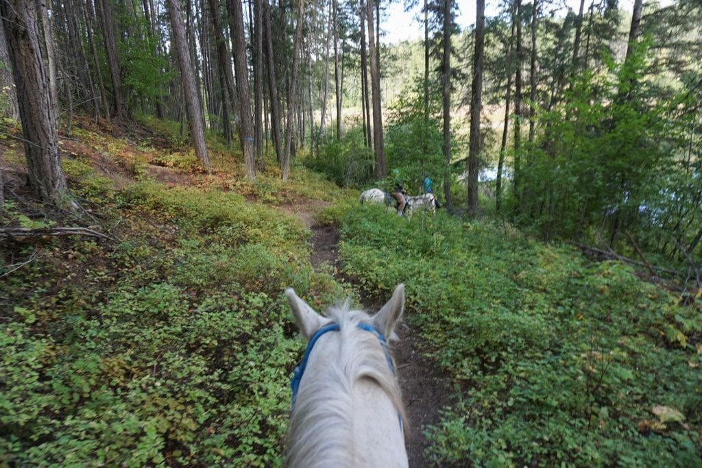 Horseback riding in Whitefish, Montana - OutsideSuburbia.com