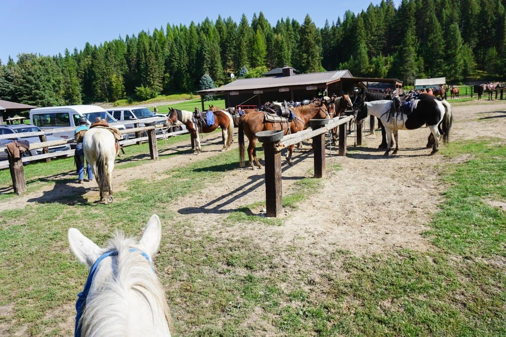 Horseback ride near Whitefish at Bar W Guest Ranch