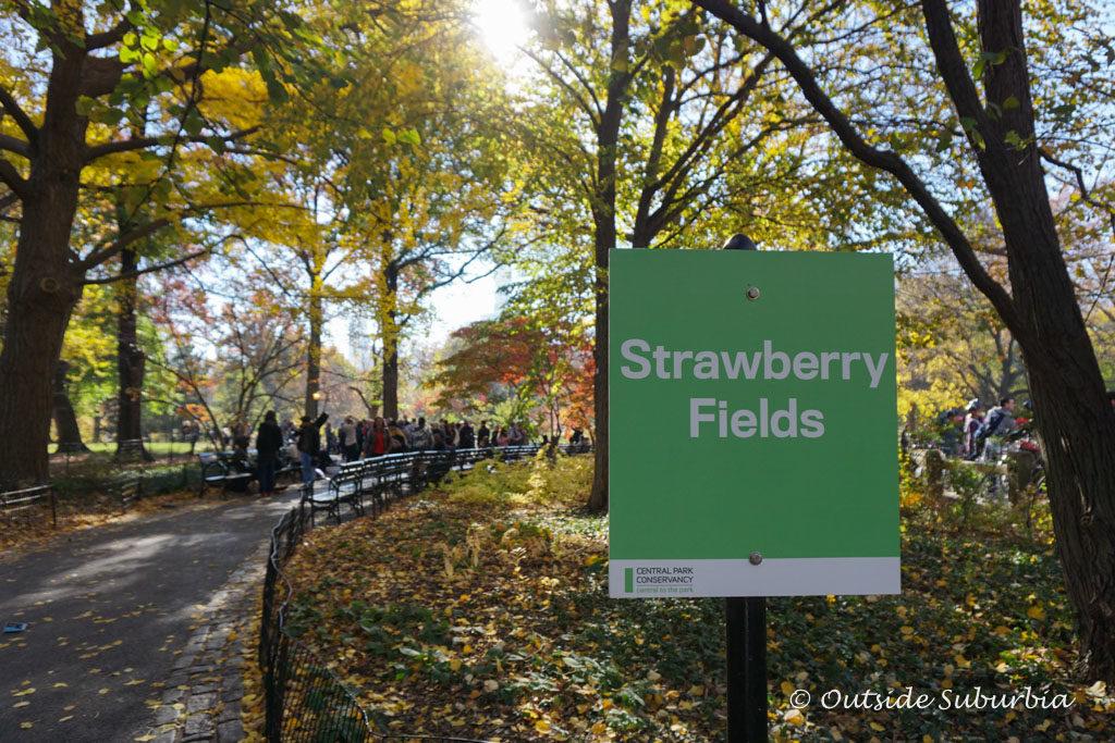 November in New York City