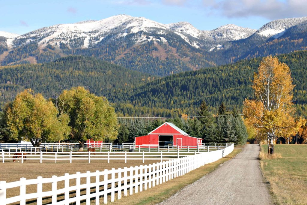 Fall colors in Whitefish, Montana