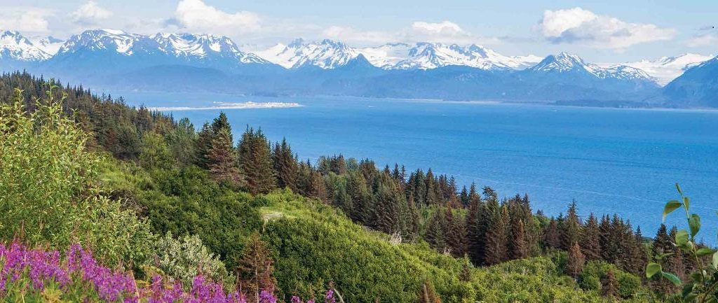 Admire the Alaskan scenery when on a cruise with ACL