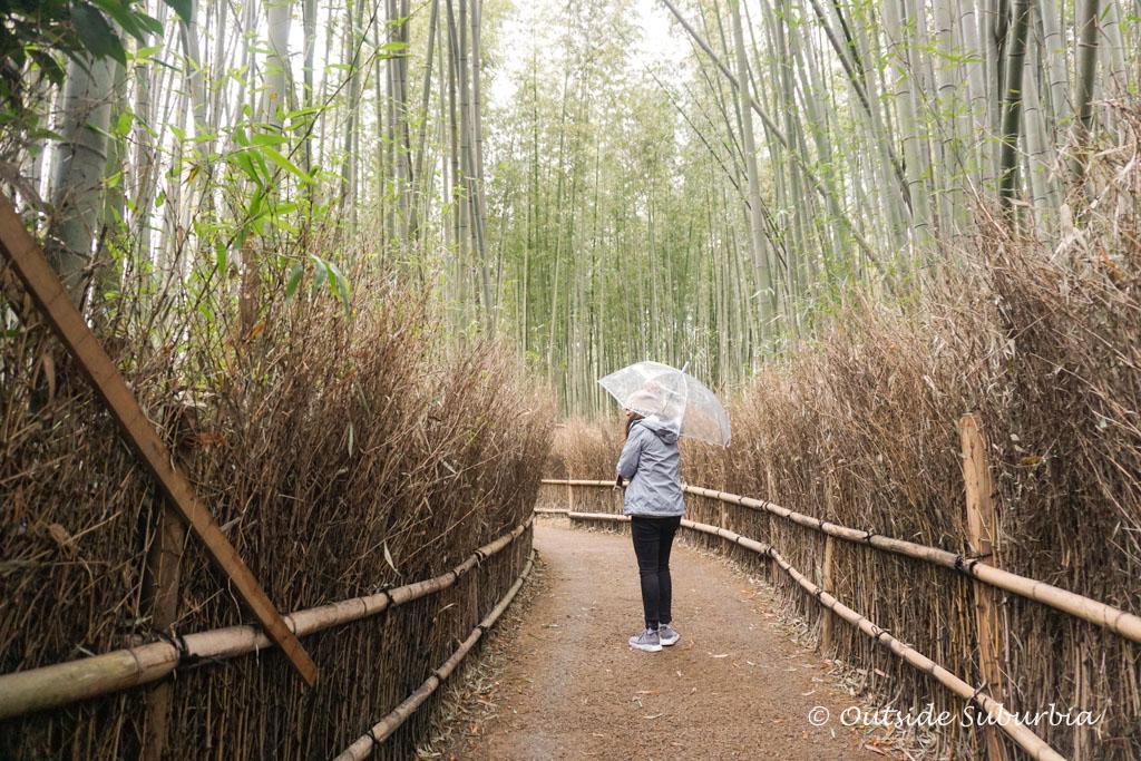 Arashiyama bamboo forest, Kyoto, Japan | Outside Suburbia