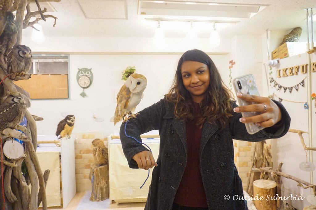 Owl cafe in Ikebukuro
