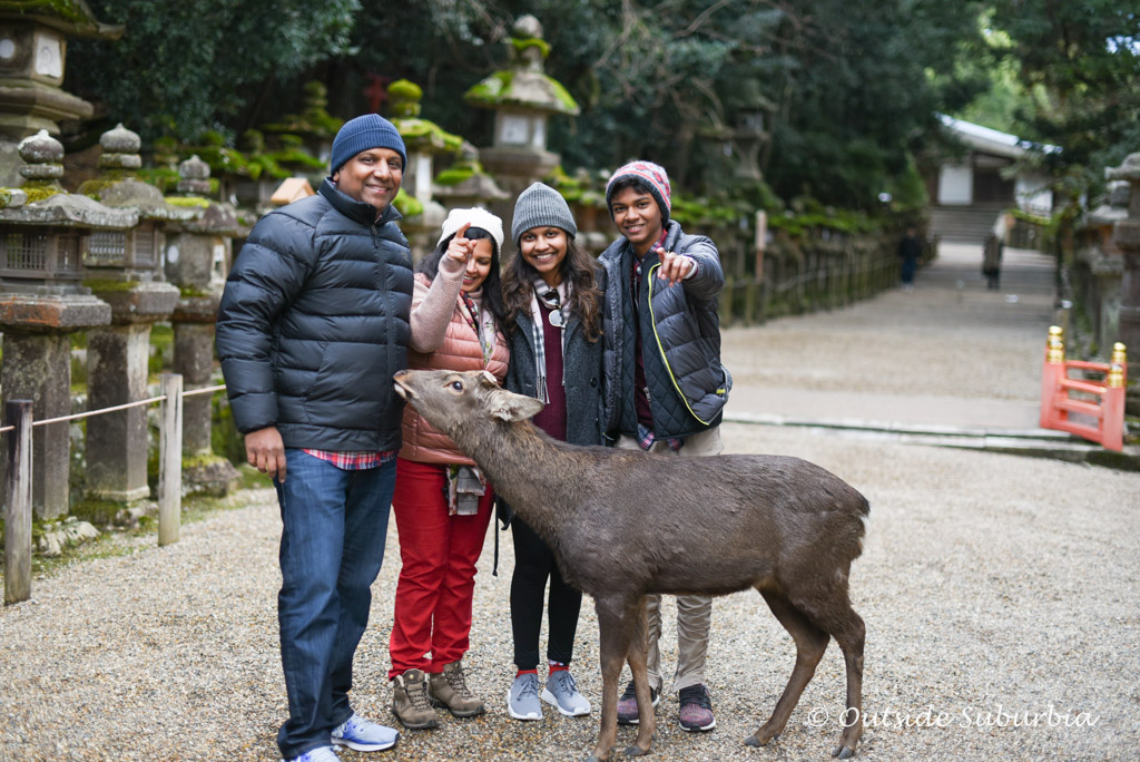 One day in Nara Itinerary | Outside Suburbia