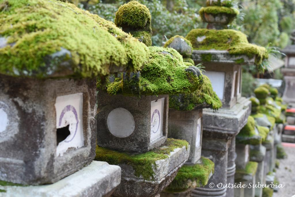 Kasuga Grand Shrine, Nara, Japan | Outside Suburbia