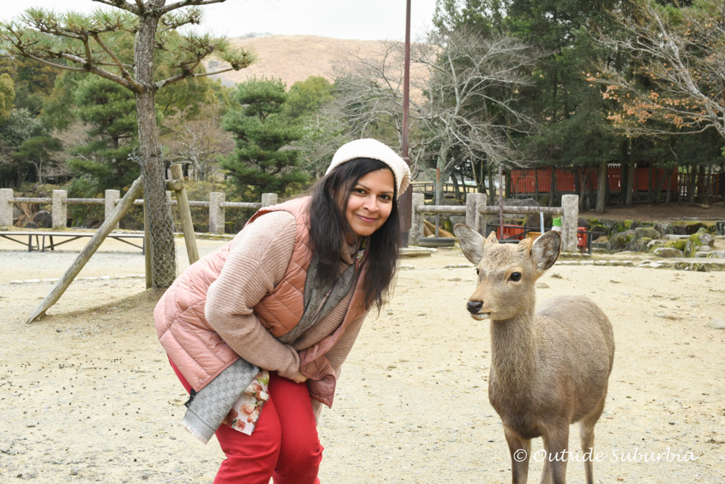 A Day trip to Nara Park, Japan | Outside Suburbia