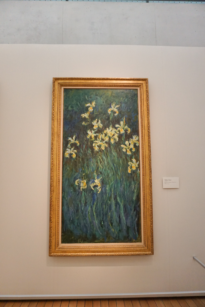 Yellow Iris  - Claude Monet Paintings